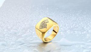 HTB1MNVWNVXXXXa2aXXXq6xXFXXXy 300x174 - Game of Thrones Ice Wolf Stainless Steel Ring