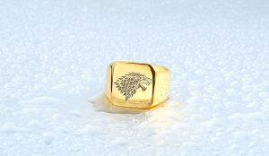 HTB1aZSsNVXXXXbGXXXXq6xXFXXXq 300x174 - Game of Thrones Ice Wolf Stainless Steel Ring