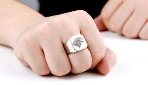HTB1vXxTNVXXXXc.aXXXq6xXFXXXM 300x174 - Game of Thrones Ice Wolf Stainless Steel Ring